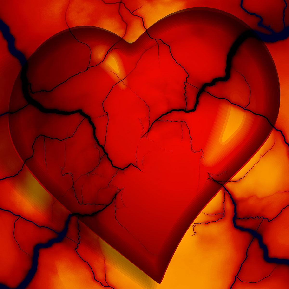 Сердце — истинные причины заболеваний