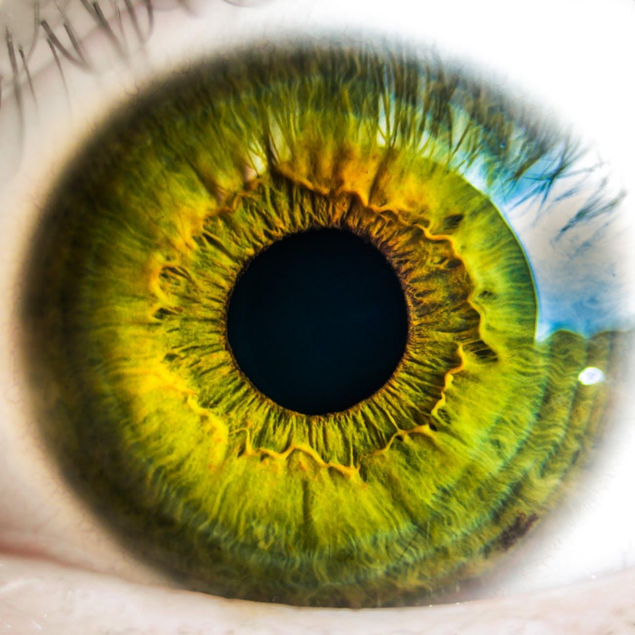 Здоровье глаз и почему ухудшается зрение