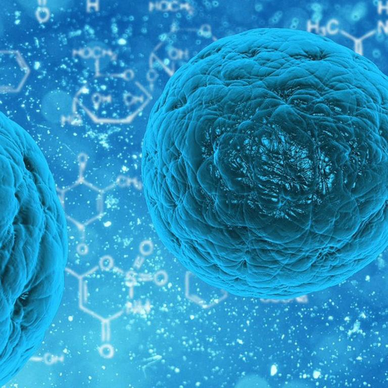 Streptokok – enterokok – kas vajalikud bakterid või haigustekitajad?