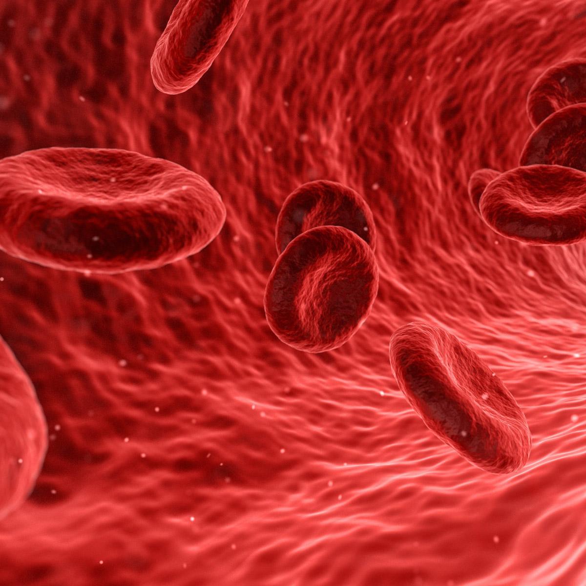 L-Arginiin – laiendab veresooni, hõlbustab vereringe talitlust ja annab energiat