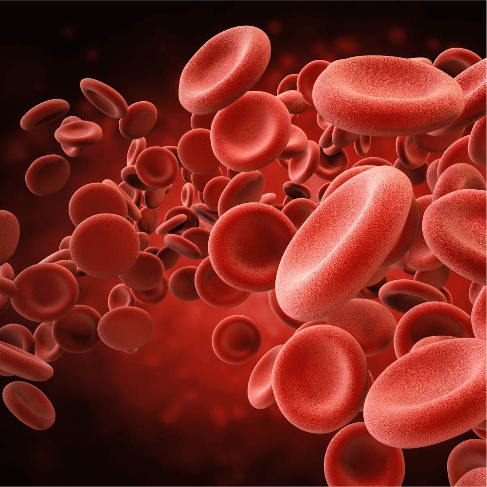 KURKUMIIN – vähendab põletikke, puhastab ja korrastab rakke