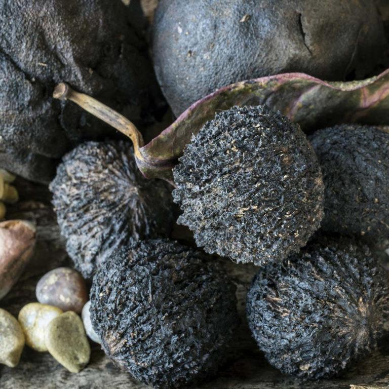 Parasiitidest vabanemine Musta pähkliga