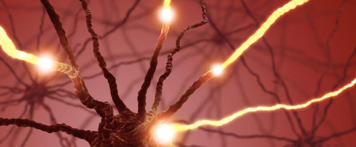 Närvisüsteem