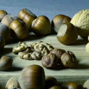 magneesium-toidus
