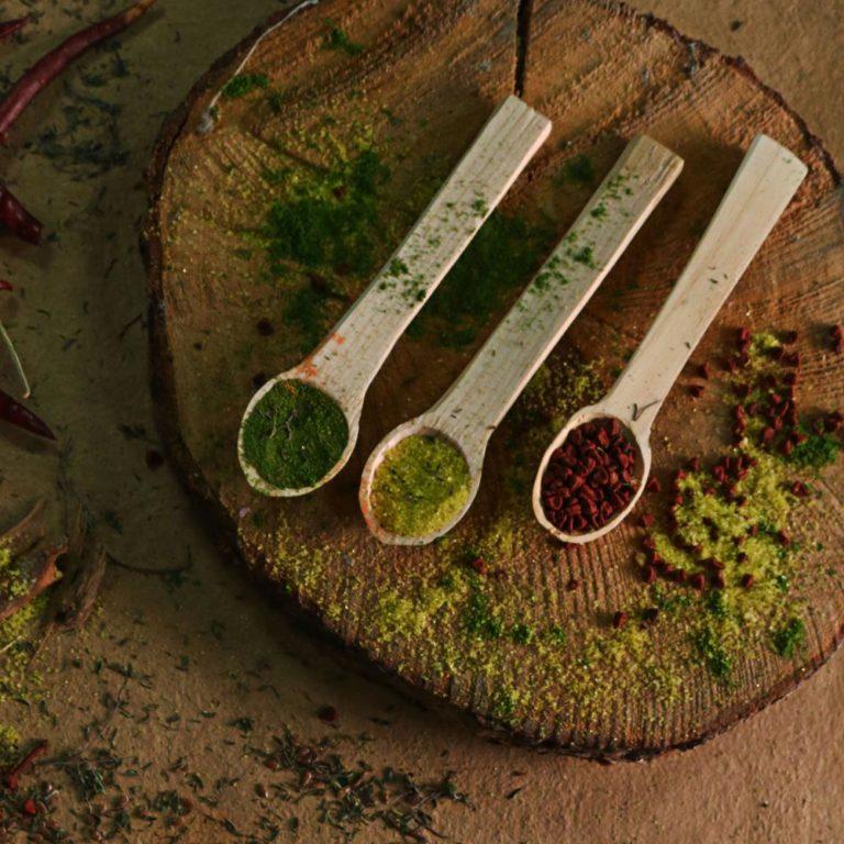 9 SuperFoods–võrratu toitainete rikkus, mis toidab, puhastab ja tervendab