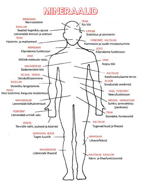 Minraalid kehas-joonis